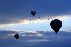 Balloons with people flying in the background of a flock of bird