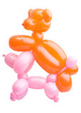 Balloons twisted into pets Stock Images