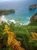 Ballota beach, Asturia y Cantabria, Spain Stock Images