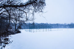 BallparkWinter Stockbild
