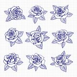 Ballpoint pen drawing roses set. On notebook background. Vector illustration Stock Images
