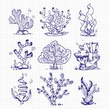 Ballpoint pen drawing seaweeds, corals, underwater plants. On notebook page. Vector illustration Royalty Free Stock Image