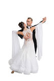 Ballrom danspar i en dans poserar isolerat på vit bachground royaltyfria foton