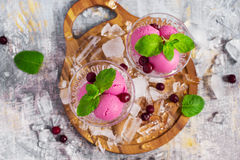 Balls berry ice cream in the ice-cream bowls, top view Royalty Free Stock Images