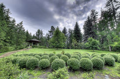 Balls of Bush. Landscape image taken at the Devonian Garden in Alberta, Canada, near Devon. 3 shot HDR stock images