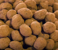 Balls of chocolate truffle Stock Images