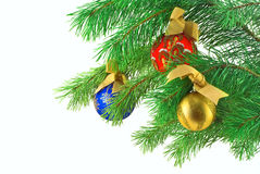 Balls on the Christmas tree Stock Images