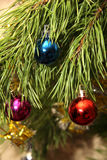 The balls on the Christmas tree. The colored balls on the Christmas tree Royalty Free Stock Images