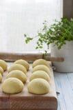 Balls of fresh homemade dough on floured wooden board Stock Image