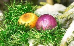 Balls on a fur-tree Stock Image