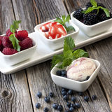 Balls of ice-cream garnished with berries on white plate Royalty Free Stock Photos
