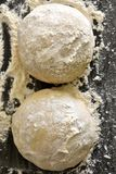 Balls of raw pizza dough royalty free stock image