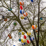 Balls in tree Royalty Free Stock Photos