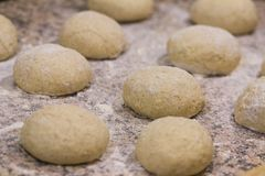 Balls of whole wheat pizza dough royalty free stock photos