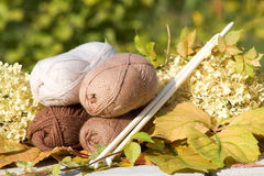 Balls of wool in shades of natural tones. And big knitting needles Royalty Free Stock Images