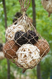 Balls woven of twigs Royalty Free Stock Photos