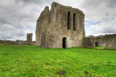 Ballybeg Priory Stock Image