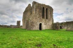 Ballybeg Priory. 13th Century Ballybeg Priory in Co. Cork - Ireland Stock Image