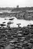 Ballybunion castle black rocks. Seaweed covered rocks with castle and cliffs on ballybunion beach in county kerry ireland Stock Photography