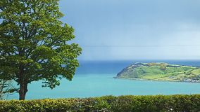 Ballygally Village Co. Antrim Northern Ireland. Thrones irish sea and a tree royalty free stock photos