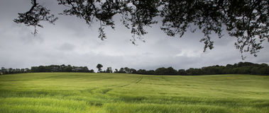 Ballymoney Zdjęcie Stock