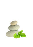 balm herb lemon spa πέτρες Στοκ Εικόνες
