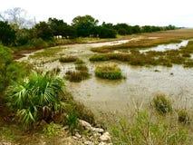 Balmy December Marsh. Marsh near the visitor's center on Jeckyl Island, GA Stock Images
