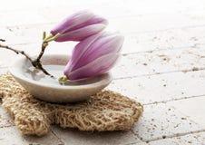 Balneario calmante de la exfoliación del cuerpo de la primavera en casa Fotos de archivo libres de regalías