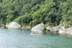Balneario Camboriu - Santa Catarina - Brasilien - tropischer Regenwald Stockfoto