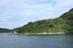 Balneario Camboriu - Santa Catarina - il Brasile - foresta pluviale tropicale Immagine Stock