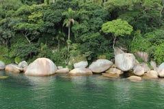 Balneario Camboriu - Santa Catarina - il Brasile - foresta pluviale tropicale Fotografia Stock