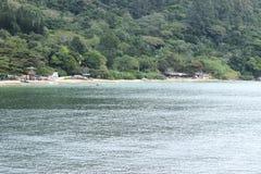 Balneario Camboriu - Santa Catarina - il Brasile - foresta pluviale tropicale Immagini Stock