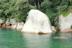 Balneario Camboriu - Santa Catarina - il Brasile - foresta pluviale tropicale Fotografie Stock Libere da Diritti