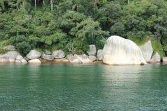 Balneario Camboriu - Santa Catarina - il Brasile - foresta pluviale tropicale Fotografia Stock Libera da Diritti