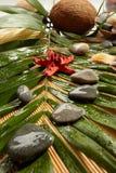 balneario de la Aún-vida Imagen de archivo libre de regalías