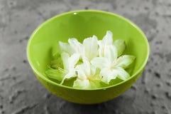 Balneario de la belleza del zen: tazón de fuente verde Foto de archivo