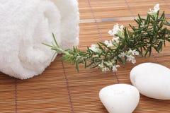 Balneario de la flor de Rosemary Imágenes de archivo libres de regalías