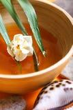 BALNEARIO de la miel Imagen de archivo libre de regalías