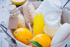 Balneario del limón de la cesta Fotos de archivo