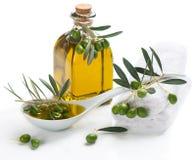 Balneario fijado con aceite de oliva una ramita Imagen de archivo libre de regalías