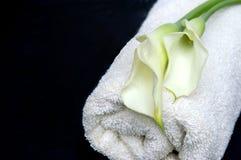 Balneario natural del baño Foto de archivo libre de regalías