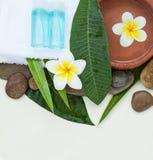Balneario o ajuste con las flores tropicales, cuenco de la salud de agua foto de archivo