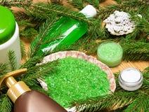 Balneario orgánico y cuidar productos en exceso cosméticos Fotografía de archivo