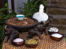 Balneario y accesorio del masaje Foto de archivo libre de regalías