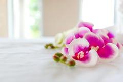 Balneario y atención sanitaria con las flores y las toallas Productos naturales a fotos de archivo libres de regalías