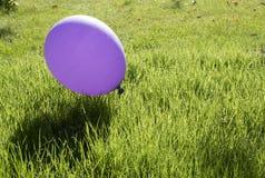 Balon na zielonej trawie Obrazy Stock