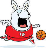 Baloncesto del conejo de la historieta Imágenes de archivo libres de regalías