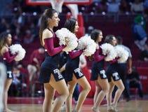 2014 baloncesto del NCAA - alegría/danza Imagen de archivo