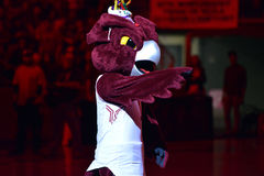 2015 baloncesto del NCAA - el Templo-ECU Foto de archivo