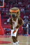 2015 baloncesto del NCAA - templo-Bucknell del NIT primer Rd Imagen de archivo libre de regalías